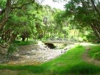 Waharau Regional Park